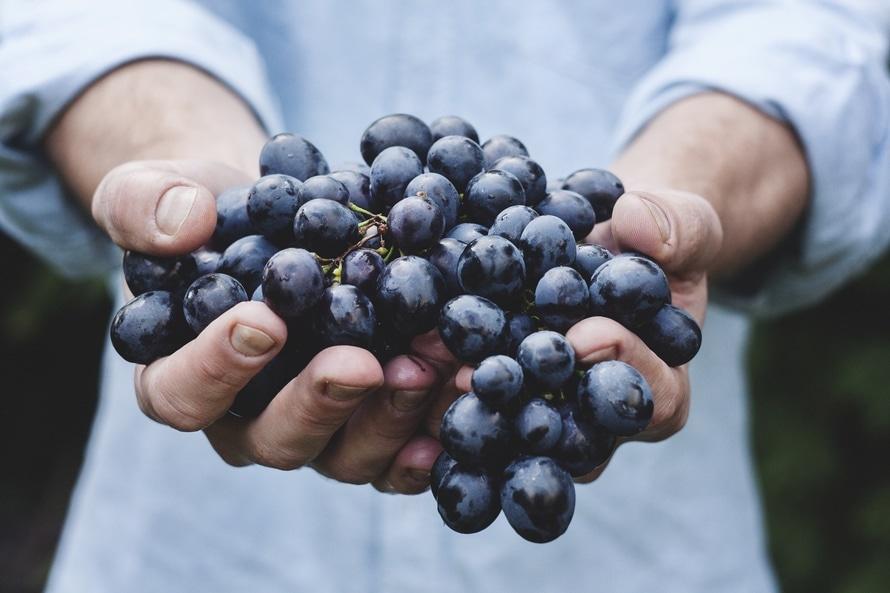 Vijf tips tegen voedselverspilling